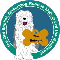 Available | Old English Sheepdog Rescue Network of the South